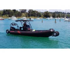 ASIS Amphibious 8.4m with Mercury Verado 250