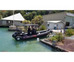 ASIS Amphibious 8.4m with Mercury Verado 250 - Image 6/10